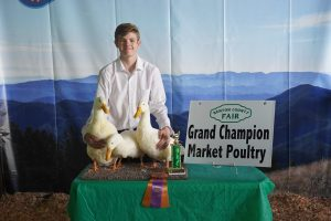 2019 Poultry Champion